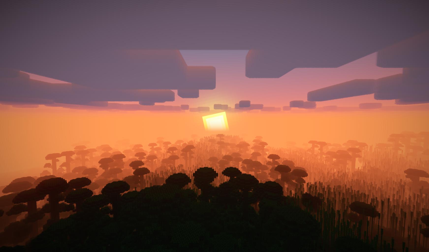 Couché de soleil sur une jungle Minecraft